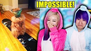 Try Not To Laugh! Impossible Challenge! (Actually Cried)