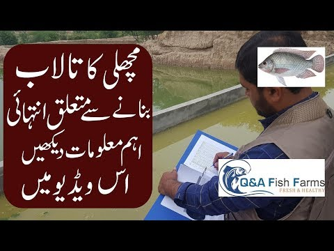 Introduction to Fish Farming. Construction of Fish pond Hindi & Urdu with0English Subtitles Video 4