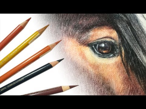 Drawing a horse's eye with coloured pencil - with commentary