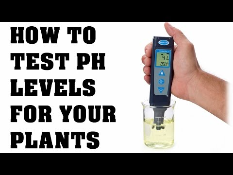 How To Use A PH Tester and Calibration - Testing PH In Your Water