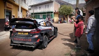 Day 4 - Rally Mexico 2017 - L. Bertelli / S. Scattolin - Ford Fiesta WRC+