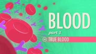Blood, Part 1 - True Blood: Crash Course A&P #29