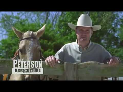 Dale Peterson for Ag Commish:  Quite possibly the best political ad ever.