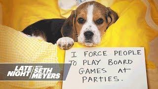 Extreme Dog Shaming: Eating Sunglasses, Digging Up Flower Beds
