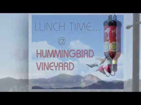 Hummingbird Vineyard Promo Video 2