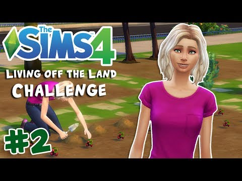 Garden Layout Changes! + Strawberry Haul!! | The Sims 4 Living off the Land Challenge | Part 2