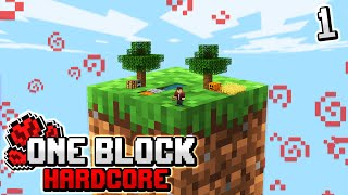 Minecraft Skyblock, but you only get ONE BLOCK.. (hardcore) #1