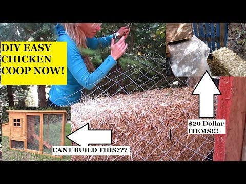 DIY CHICKEN COOP FOR LESS THAN $20!!!!