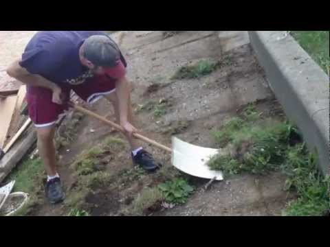 How to remove weeds from between cracks in cement
