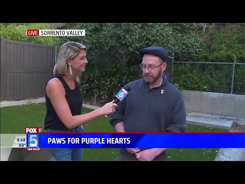Fox 5 Highlights Paws for Purple Hearts