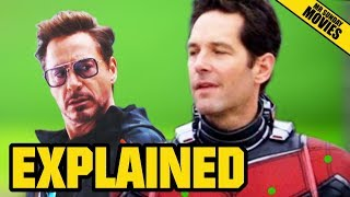 Avengers 4, Ant-man & The Quantum Realm Explained