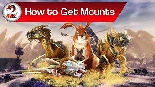 gw2 mounts Videos - ytube tv