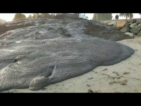 Montecito Mudslide Debris Dropped at Goleta Beach Santa Barbara Thomas Fire Flooding