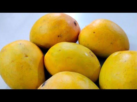 how to preserve mango pulp at home||કેરી ને આખું વર્ષ સ્ટોર કરવાની બે રીત