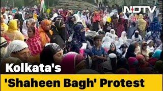 Shaheen Bagh-Like Protest In Park Circus, Kolkata