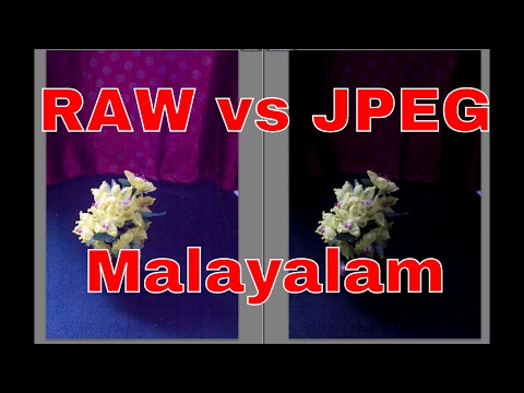 RAW vs JPEG Which format to shoot in? (in Malayalam)