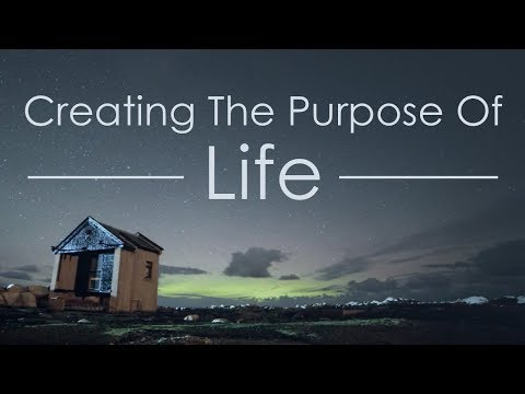 The Purpose Of Life - How Humans Create Meaning Out Of Meaninglessness