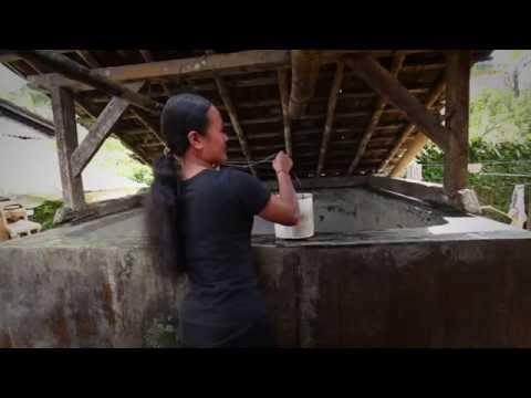 Rainwater Harvesting for Clean Drinking Water in Indonesia