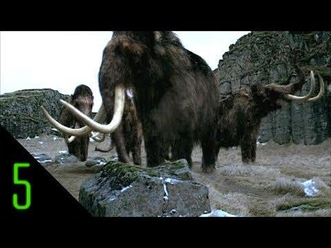 5 Extinct Animals That May Still Roam the Earth
