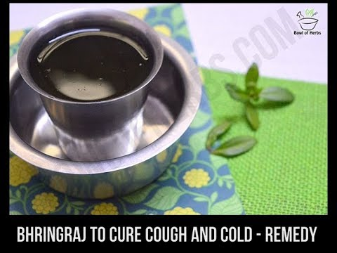 Bringraj to cure cough and cold - Home remedy