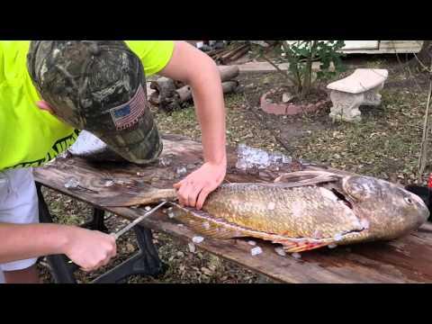 Michael Clark cleaning a black drum fish TX 2016