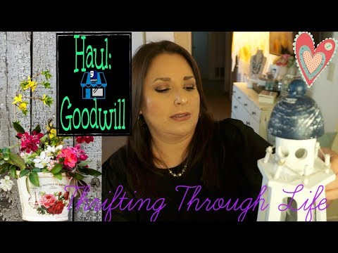 Goodwill Haul | Just A Few Items & One Exciting Find