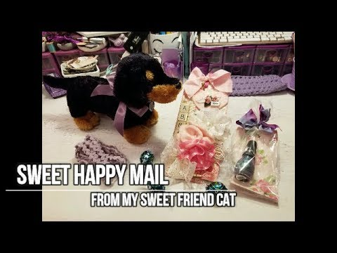 Sweet Happy Mail From Cat