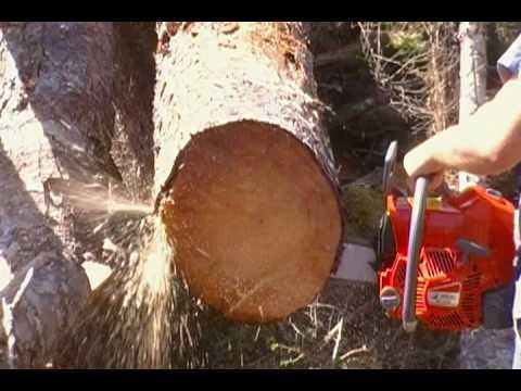 Efco 82cc Chainsaw (First Cuts)