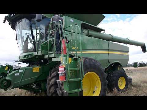 Brome grass management using Brome RIM - Michael Pole, Walpeup, Vic