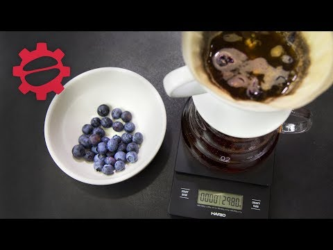 The Blueberry Pourover   Coffee Collaboration