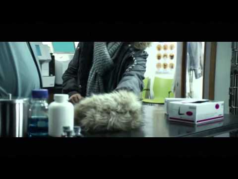 Specsavers - cat with no pulse