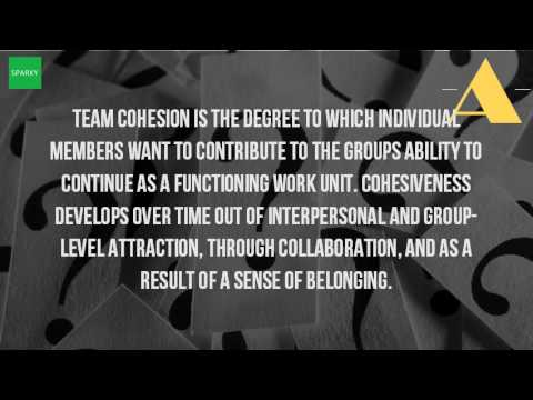 What Is The Meaning Of Team Cohesion?