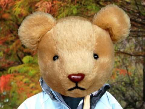 GEORGE HAMILTON THE BEAR