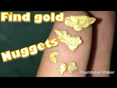 Metal Detecting - Finding gold nuggets