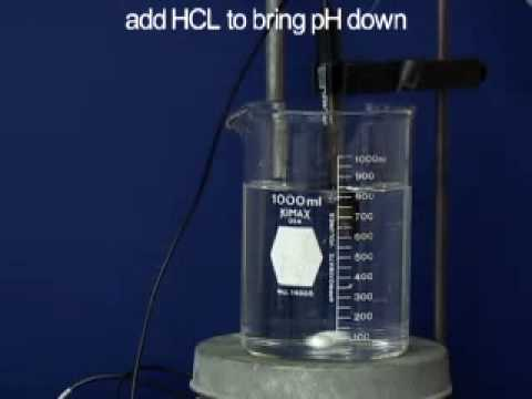 Buffers and pH Meter | MIT Digital Lab Techniques Manual