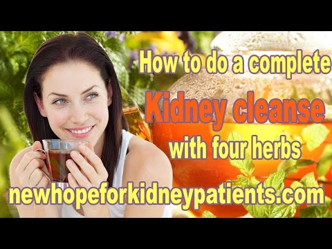 How To Do a Complete Kidney Cleanse with Four Herbs