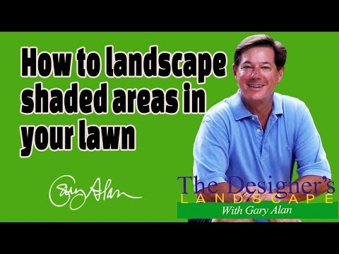 How to Landscape shaded areas in your lawn Designers Landscape#618