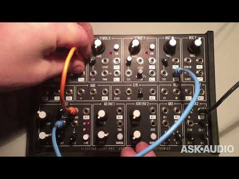 Plankton Electronics ANTS! Semi-Modular Analog Synth Review