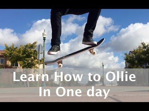 Learn to Ollie in One Day