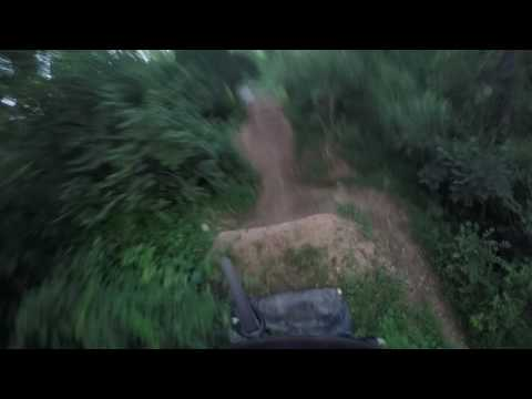 Posh Woods Sticks to Bomb Drop