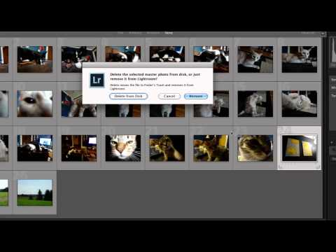 How to Delete Photos From Lightroom Catalog