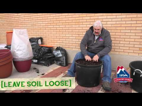 Container Gardening In 3D • 1/7