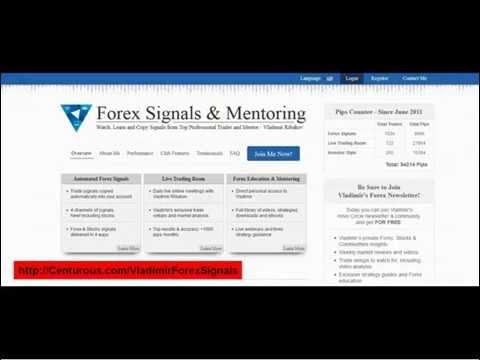 Vladimir Forex Signals & Mentoring review