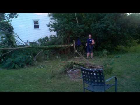 Tree two. Wrong direction john.