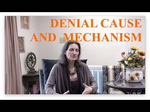 Denial Cause and Mechanism: How Denial Appears and Persists - Interview with Lynn Himmelman