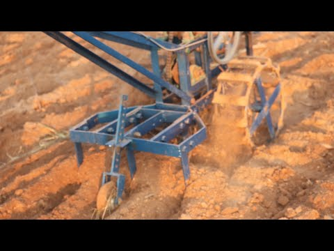 Indian Agricultural Framing Cultivator