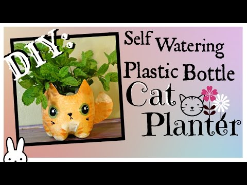 DIY: how to make a self watering plastic bottle kitty cat planter / tutorial