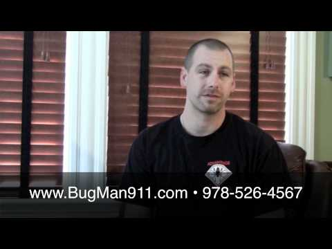 How do people get bed bugs? Greater Boston, MA