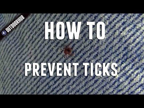 How To Prevent Ticks While Outdoors