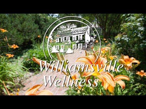 Bob Cabaniss - Williamsville History